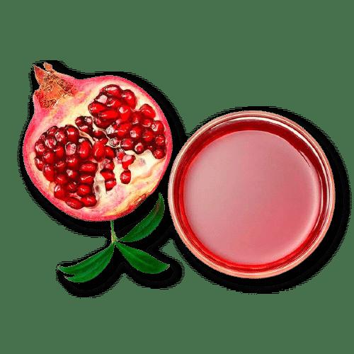 Гранатовый чай Детокс (растворимый напиток, 120 г)